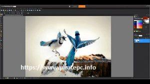 PaintShop Pro 2020 Full Crack With License key